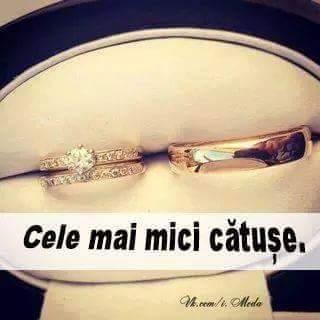 catuse